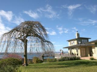 Acacia Bay Crow's Nest - Taupo vacation rentals
