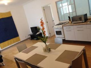 Apt in Roma neighborhood 1 block from subway - Mexico City vacation rentals