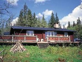 House in Sälen - 192750 - Dalarna vacation rentals