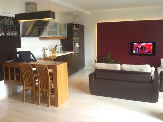 1bedroom modern design apartment rent - Vilnius vacation rentals