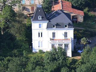 Manoir du Nouvela 15/18 pers. 5000 m² avec piscine - Saint-Amans-Soult vacation rentals
