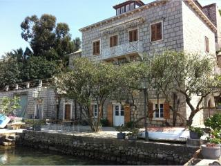 "Traditional 19th century stone  Villa ""Birimisa"" - Lopud vacation rentals"