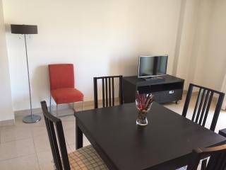 Nice 1 bedroom Apartment in Santa Cruz de Tenerife with Internet Access - Santa Cruz de Tenerife vacation rentals