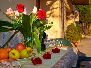 Country House Villa Pietro Romano ap. Rustico - Castel Madama vacation rentals
