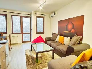 Deluxe two bedroom apartment with large terrace - Sofia vacation rentals