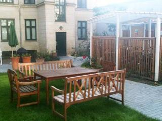 Central Copenhagen Apartment-Good month.price Feb and March! - Copenhagen Region vacation rentals