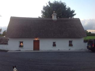 Cozy 2 bedroom Cottage in Ballacolla - Ballacolla vacation rentals