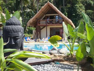 Cottage Sawah new, 14m pool, breakfast, East  Bali - Karangasem vacation rentals