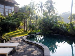 Luxury villa overlooking a rice field valley, Ubud - Tegalalang vacation rentals