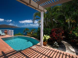 4 Bedroom, 3 Bathroom Tropical Paradise, Pool & Hot Tub, Sleeps 8 - Peterborg vacation rentals