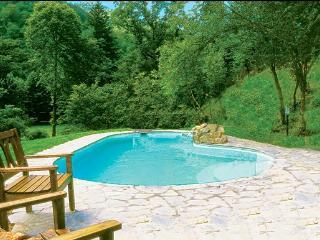 5 bedroom Villa in Borgo San Lorenzo, Mugello, Florentine Hills, Italy : ref - Polcanto vacation rentals