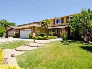 Sweetberry home, sleep 12 - San Jose vacation rentals