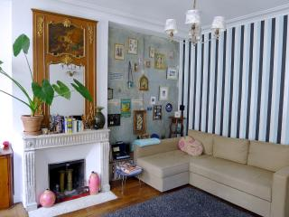 Cool apartment by the canal. Free wi-fi! Blu-ray! - Paris vacation rentals