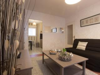 1 bedroom Apartment with Internet Access in Dijon - Dijon vacation rentals