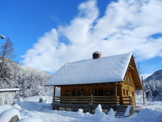 Villa Kelt - mountain retreat, Alps - Zgornje Jezersko vacation rentals