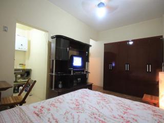 ★Riachuelo 306★ - Rio de Janeiro vacation rentals