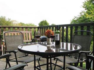 Lovely 4 bedroom House in Gunnislake with Television - Gunnislake vacation rentals