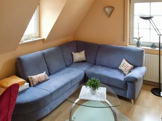 Cheery flat with terrace in Traben-Trarbach - near the countryside and the river Moselle, bike rental included - Traben-Trarbach vacation rentals