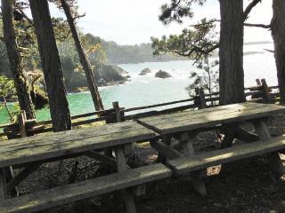 Mendocino, Sea Views, Stroll to State Park, Beach - Mendocino vacation rentals