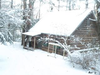 Cabin on White Water Toccoa River! - Blue Ridge vacation rentals
