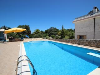 Fantastic Hillside Apartment with own private pool - Selva di Fasano vacation rentals