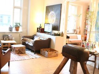 Artist Copenhagen apartment with view to the lakes - Copenhagen vacation rentals