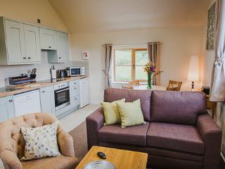 Bright Apartment in Burrington with Satellite Or Cable TV, sleeps 4 - Burrington vacation rentals