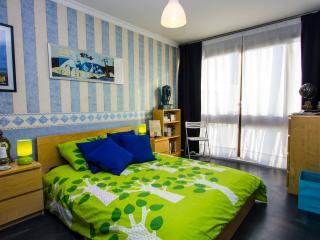 Grande chambre lumineuse - Fontenay-le-Fleury vacation rentals