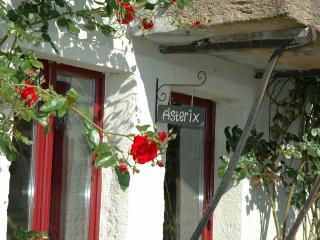 Morvan Rustique - Gîte Asterix - Saone-et-Loire vacation rentals