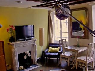 Studio rue Rambuteau 390 - Paris vacation rentals