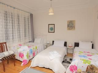 TAKSİM SHARED3 in 2personroom CENTRALRETROCLEAN - Istanbul vacation rentals