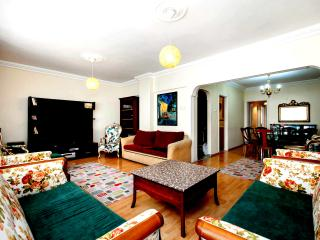 Central 3bedrooms Apartment near sea&tram station - Istanbul vacation rentals