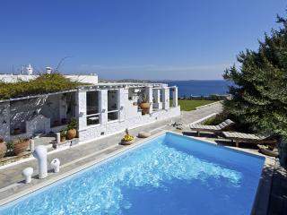 Villa Agia Thalassa - Ampelas vacation rentals