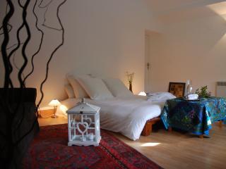4 bedroom Bed and Breakfast with Internet Access in Metz - Metz vacation rentals