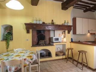 Nice Vacation Rental at Casa Rossa in Lucca - Lucca vacation rentals