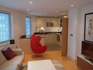 Two Bedroom property A508 canary wharf - London vacation rentals