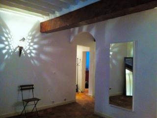 Appartment in the very heart of Avignon - Vaucluse vacation rentals