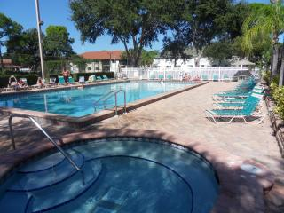 Beautiful Condo with Deck and Internet Access - Bradenton vacation rentals