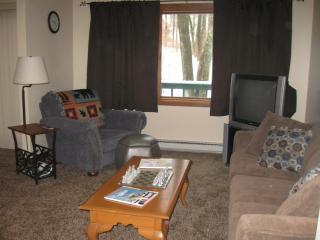 521 Laurel Pond - Farmington vacation rentals