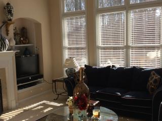 Perfect Getaway in Atlanta Georgia - College Park vacation rentals