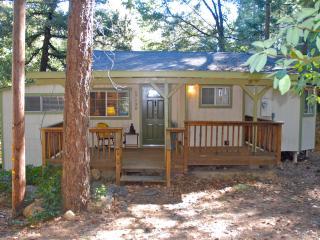 Moss Rock Cabin - Cobb vacation rentals