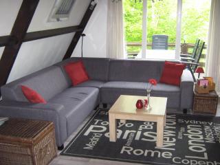 5-pers huis Belgische Ardennen - The Ardennes vacation rentals