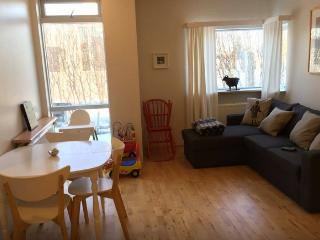 Nice Condo with Internet Access and Central Heating - Kopavogur vacation rentals