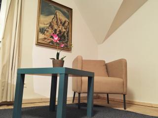 Apartment, Salzburg City, Austrasse 7, - Salzburg vacation rentals