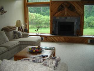 Tripp Lake townhouse - overlooking lake - Warrensburg vacation rentals