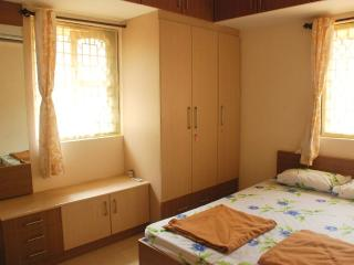 3 bedroom villa candolim. - Candolim vacation rentals