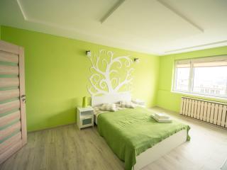 Cluj Napoca Apartament Lux Cuza Voda - Romania vacation rentals