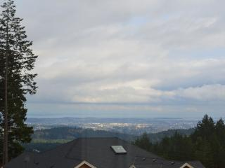 Panoramic View on Bear Mountain - Victoria vacation rentals
