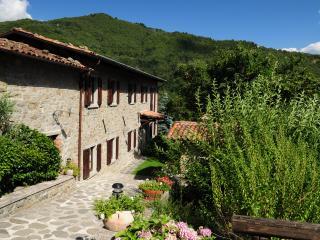 Vacanze in Toscana alle Selve di Castiglione di g - Castiglione Di Garfagnana vacation rentals
