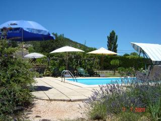 Apartment With Private Pool And Garden - Le Val vacation rentals